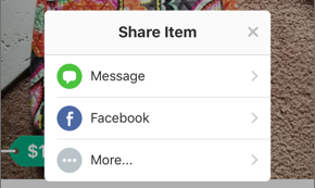 Screenshot of the Share Item menu.